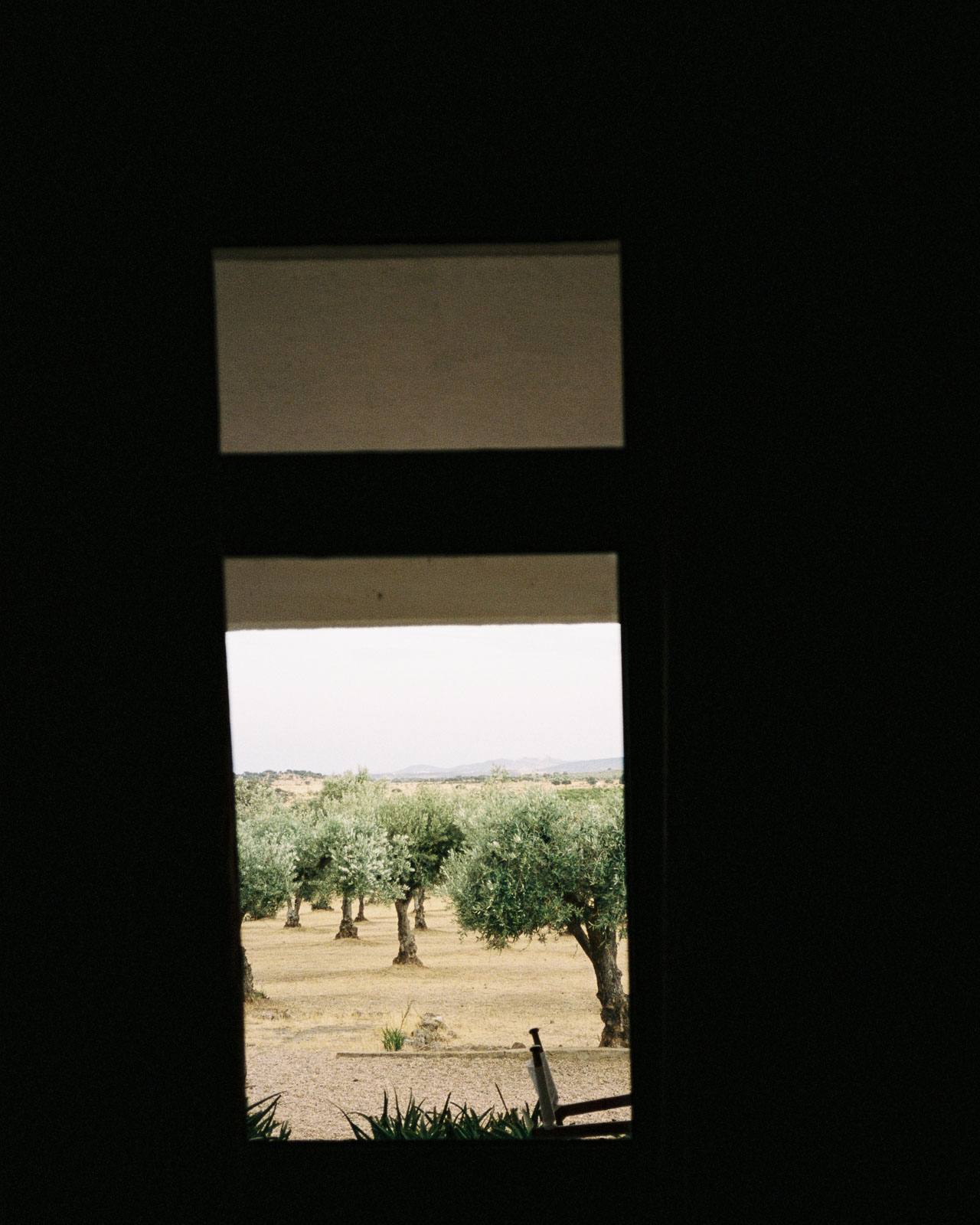 storm wes analog diary portugal 2019 shot with yashica t4 alentejo